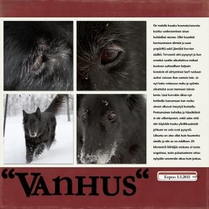 Vanhus 12x12 72dpi