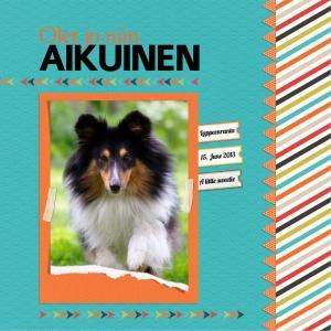 Aikuinen_12x12