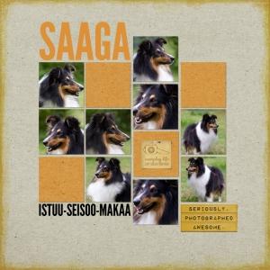 Saaga_12x12_Recipe3