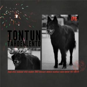TonttuMessari_12x12