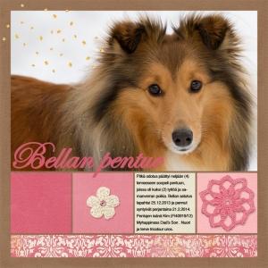 BellanPennutSynty_12x12 copy