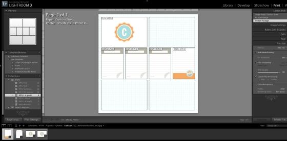 Lightroom, Print-module. Tilanne hetkeä ennen tiedontoon tallettamista.